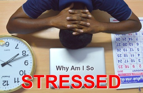 Why Are People So Stressed?